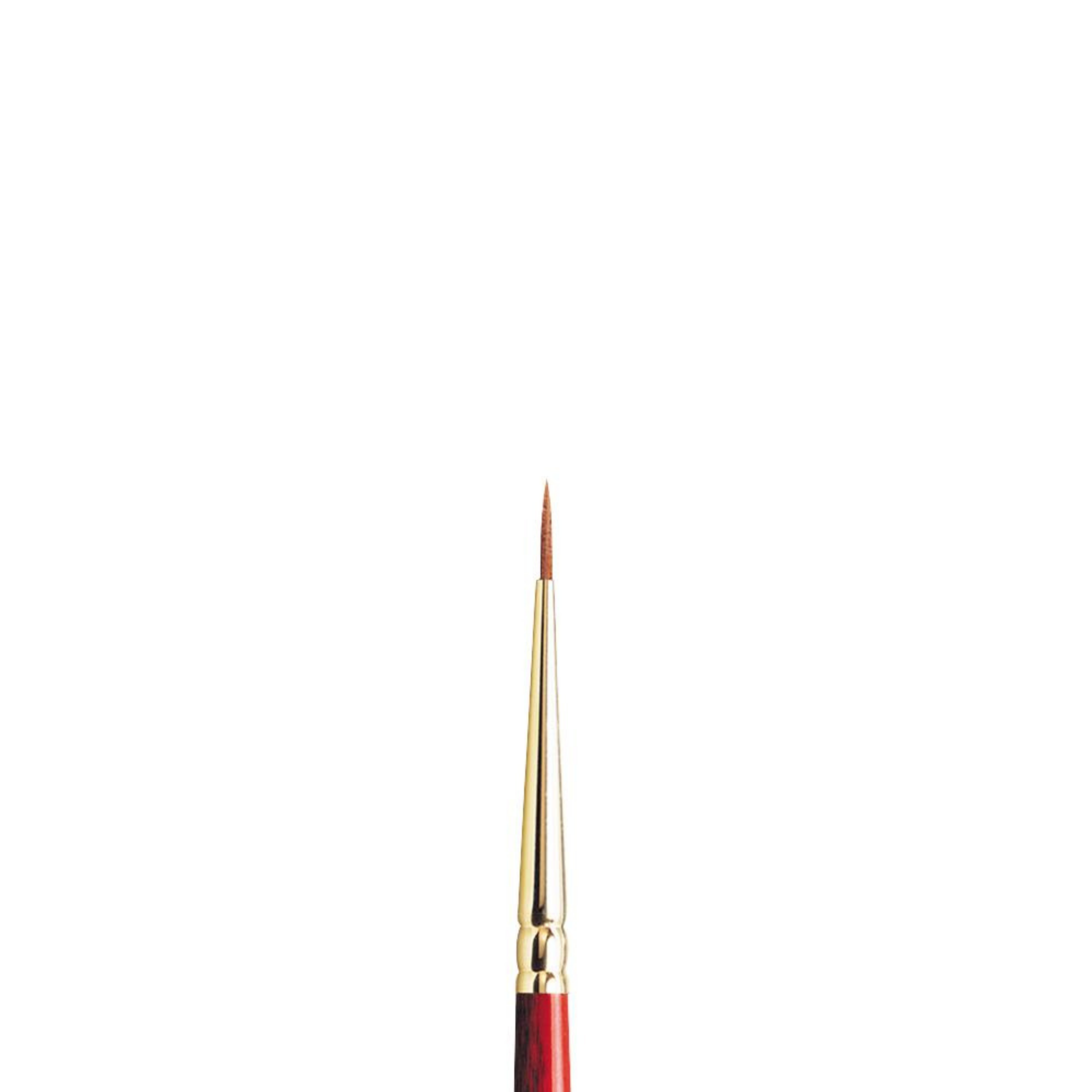 PINCEL WN RED/MARTA-NYLON SCEPTRE GOLD II #00