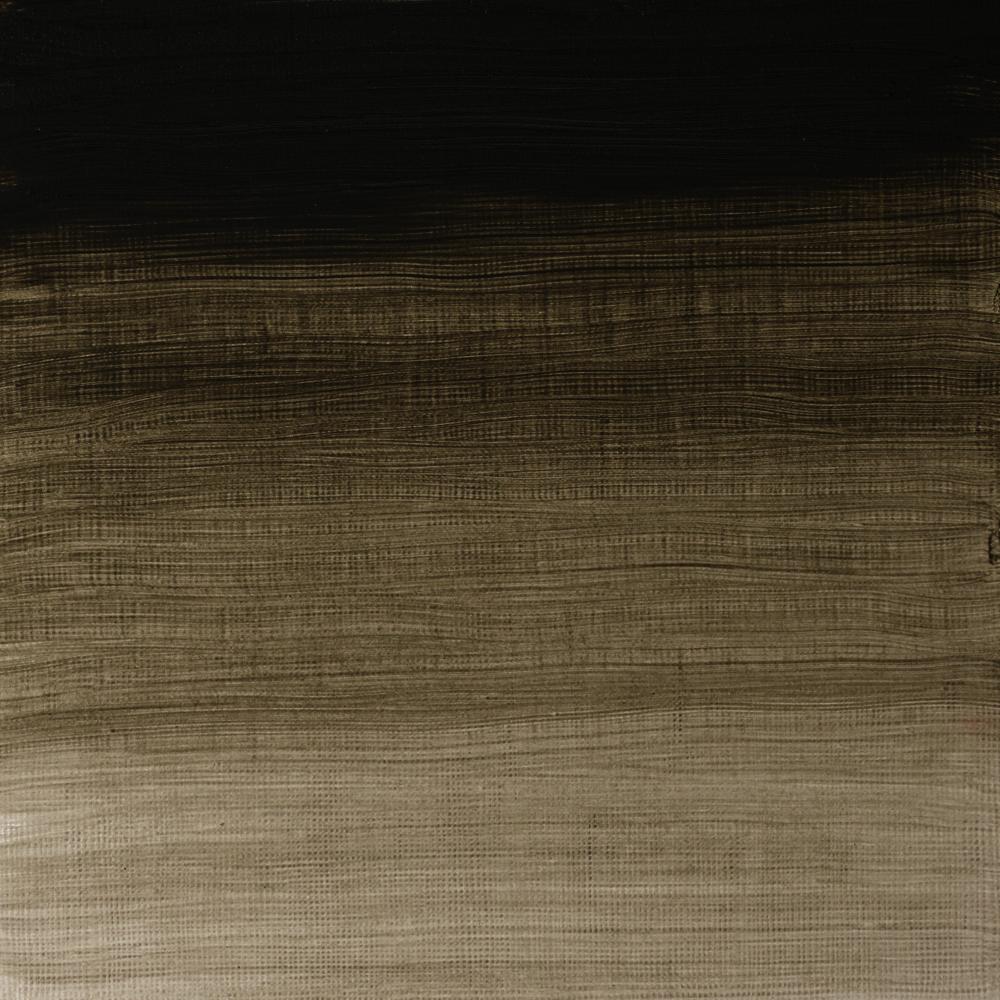 ÓLEO ARTISTS W&N 37ML S2 GRIS DE DAVY 217
